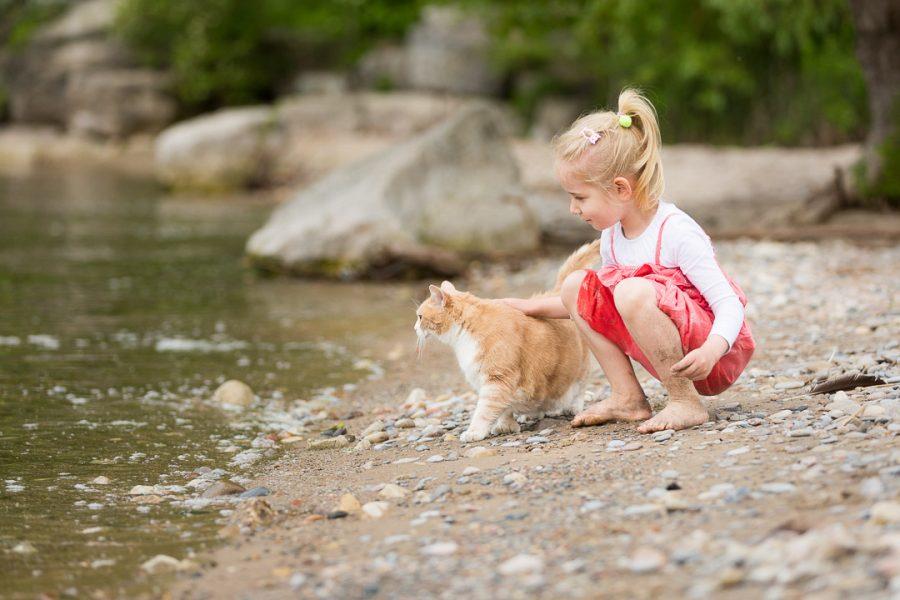 girl stroking a cat on the beach Toronto Islands